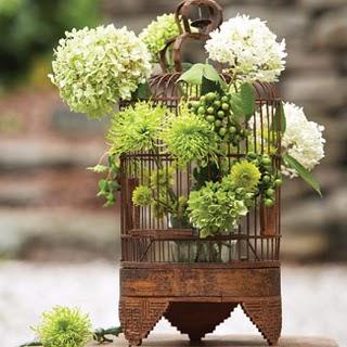 Resultado de imagem para flor na gaiola